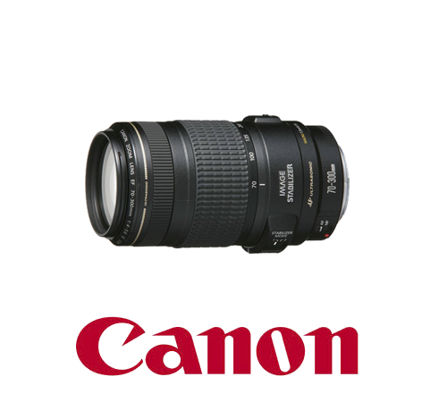 Canon 70-300 mm Lens